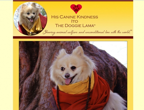 Doggie Lama